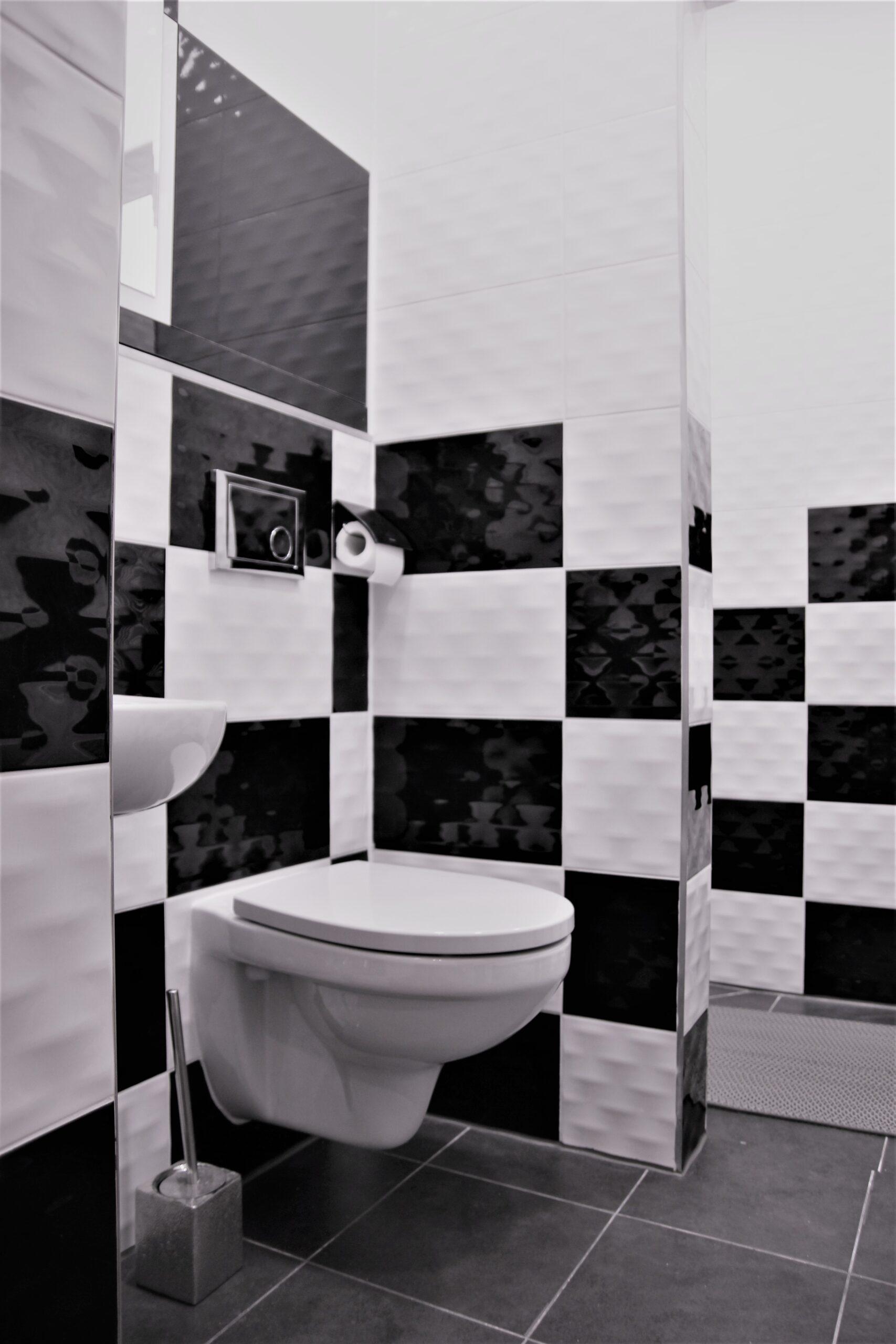 BLACK CHESS RESTROOM-Central hostel jelgava-Hostelis Jelgava-naktsmītne Jelgavā-vannas istaba-tualete.3